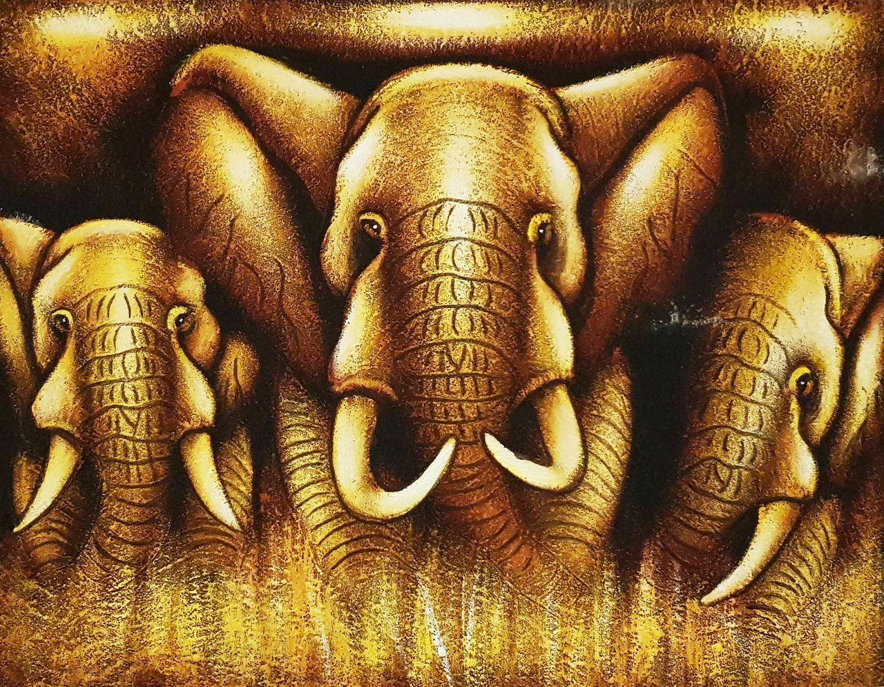 obraz slony v buši.jpg